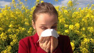 花粉症じゃない人